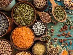TruBlue Grain & Pulses, Maharashtra
