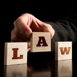 Legal Litigation Services
