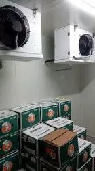 Fully Automatic Food Cold Storage Room