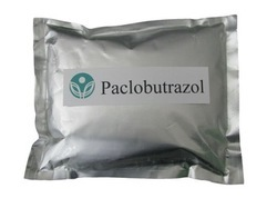 Paclobutrazol 25%