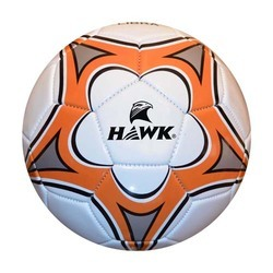 Volleyball PVC cover Hawk Veloce