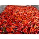 Dry Red Whole Chilli
