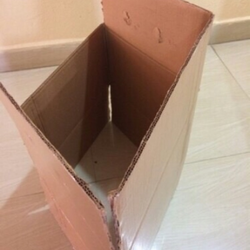 Laminated Carton Box