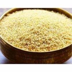 Yellow Thinai Rice Foxtail, High in Protein