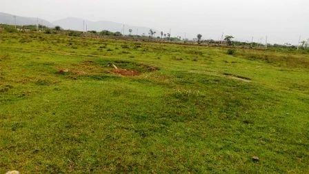 500 Acres Land