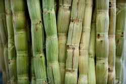 Peeled Sugarcane