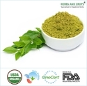 USDA Organic Henna Powder