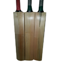 Kashmir Willow Tennis Half Cane Handle Bat