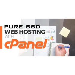 Pure SSD Web Hosting With C Panel Services