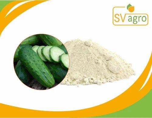 Food Grade Cucumber Extract Spray Dried Powder