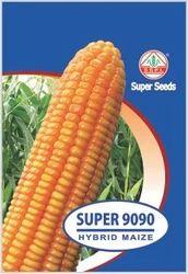 Super 9090 Hybrid Maize Seed