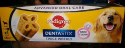 Dogs Dental Care