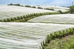 Agricultural Non Woven Fabric