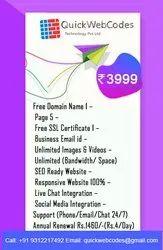 Basic Business Site Responsive Web Designing, India, SEO