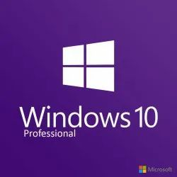 Microsoft Windows 10 Pro License