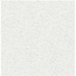 Fine 1 Inch Ceramic Tile Tiny 12X12 Ceiling Tiles Lowes Square 12X12 Vinyl Floor Tiles 1930 Floor Tiles Young 2 X 4 Ceramic Tile Blue2X2 Black Ceiling Tiles Anti Skid Floor Tile In Ahmedabad, Gujarat, India   IndiaMART