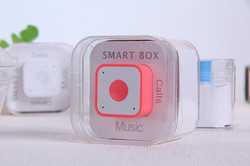 Smart Box BT Speaker