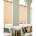 Designer Roller Shade Living Room Blind