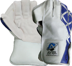 Aver Catch it Wicket Keeping Gloves