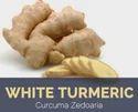 White Turmeric