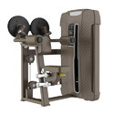 Ufs-4005 Universal Lateral Raise Machine, For Household And Gym