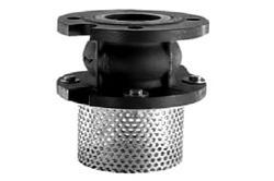 Flanged End Cast Iron Foot Valve