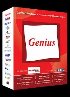 GENIUS SOFTWARES and GEN GST Service Provider   Infidreamer