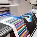 Colored Flex Printing Service, In Pan India