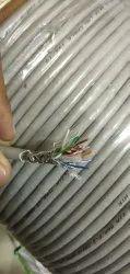 D Link Cat 6 STP Cable