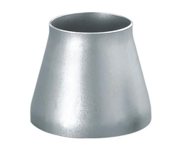 Stainless Steel Reducer Fitting 310
