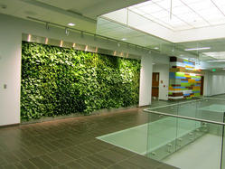 Vertical Indoor Wall Garden