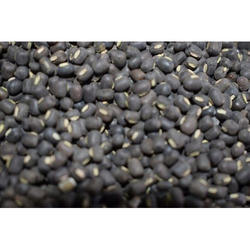 Whole Black Urad Dal, Packaging Size: 50 Kg, High in Protein