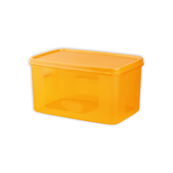 Plastic Bread Box Container