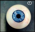Human Artificial Eye