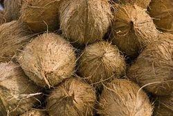 Farm Fresh Coconuts