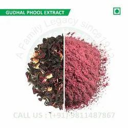 Gudhal Phool Extract (Hibiscus, Abelmoschus Cruentus, Jamaica, Gongura, Sabdariffa Rubra Sour)