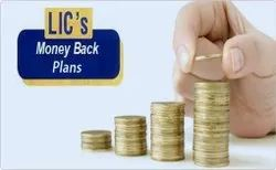 Wealth Accumulation Money Back Policy, Age Limit: 18 To 55, 14 Years