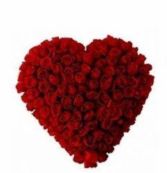 Scarlett Heart of Love