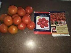 Tomato F1 Hybrid Seeds
