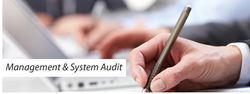 Management And Systems Audits Services