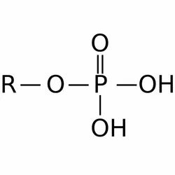 Phosphates Food Chemicals