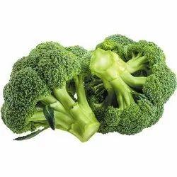 Broccoli Shogun