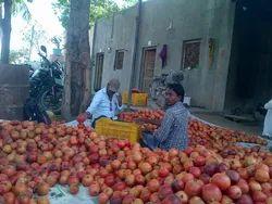Pomegranate Marketing Service