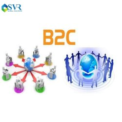 B2C Web Portal Development