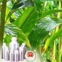 Cardamom (Big) Oil