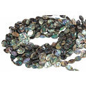 Abalone Gemstone Beads
