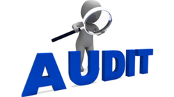 Statutory And Tax Audit Service