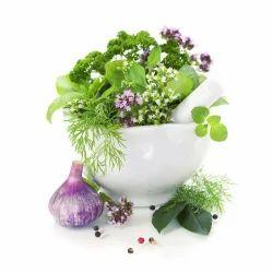 Ayurvedic Herbal Franchise in Balasore- Odisha