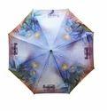 Beautiful Umbrella