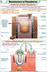Manufacture of Phosphorus For Chemistry Chart
